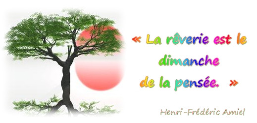 http://toutoblog.unblog.fr