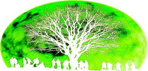 treez.org via toutoblog.unblog.fr