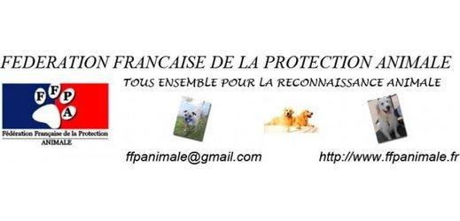 FFPAnimale via toutoblog.unblog.fr