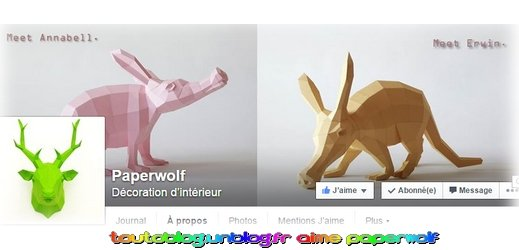 Paperwolf via toutoblog.unblog.fr