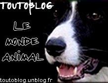 Le Monde Animal sur toutoblog.unblog.fr