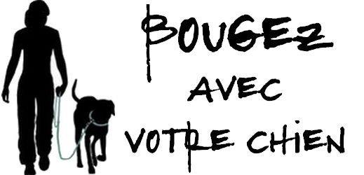 Bougez avec votre chien - toutoblog@unblog.fr
