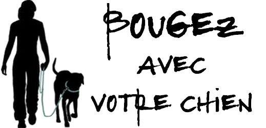 Bougez avec votre chien - toutoblog.unblog.fr