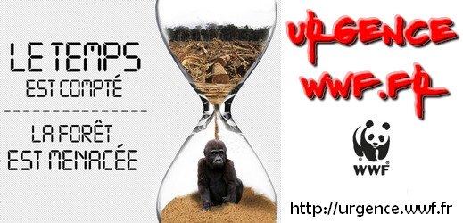 WWF urgence