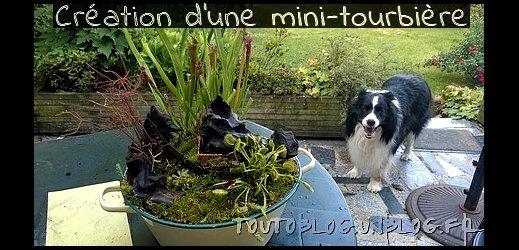 Création d'une mini-tourbière #toutoblog.unblog.fr