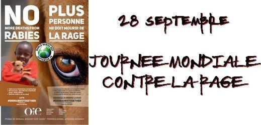 Journée Mondiale Contre la Rage - OIE via #toutoblog.unblog.fr