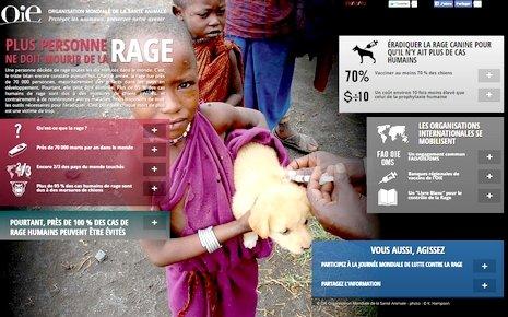 OIE - infographie sur la rage via #toutoblog.unblog.fr