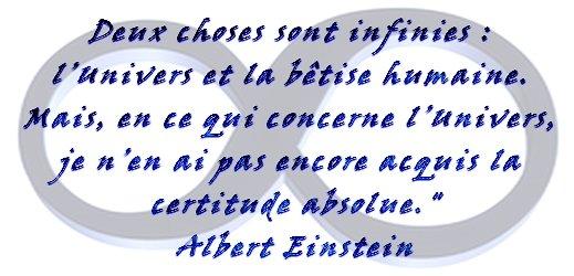 Einstein - citation via #toutoblog.unblog.fr