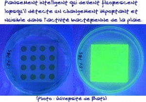 Pansement intelligent fluorescent via #toutoblog.unblog.fr
