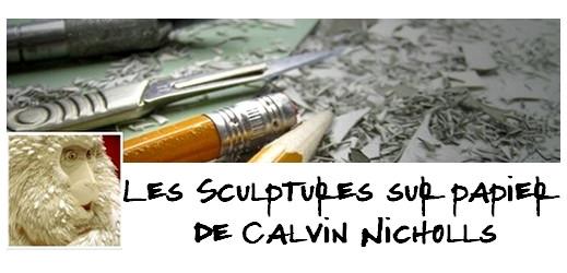 #CalvinNicholls via #toutoblog.unblog.fr