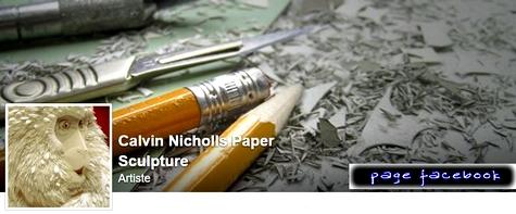 La page facebook de #CalvinNicholls via #toutoblog.unblog.fr