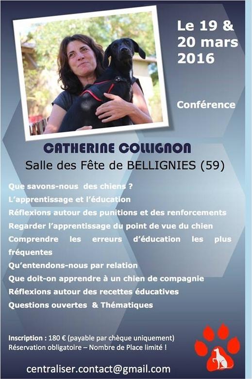 #conférence #CatherineCollignon via #toutoblog.unblog.fr
