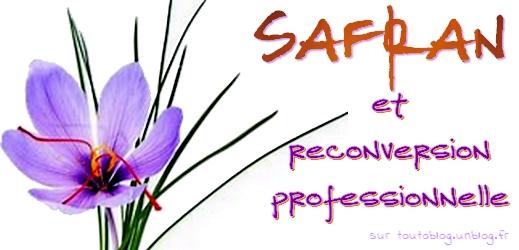 SafranReconversionProfessionnelle via #toutoblog.unblog.fr