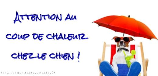 #toutoblog.unblog.fr